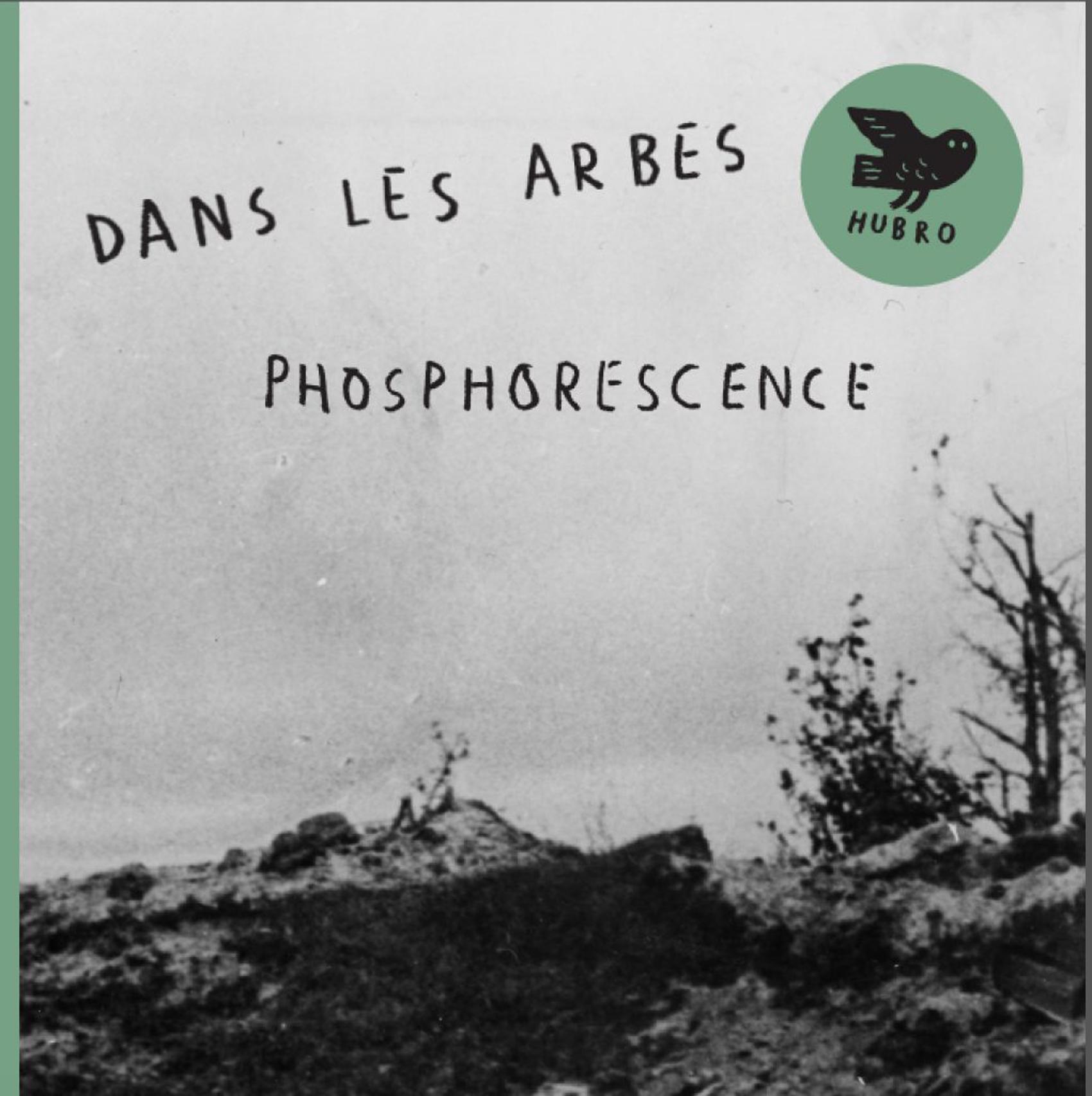 DLA-Phosphorescence-cover-1021x1024