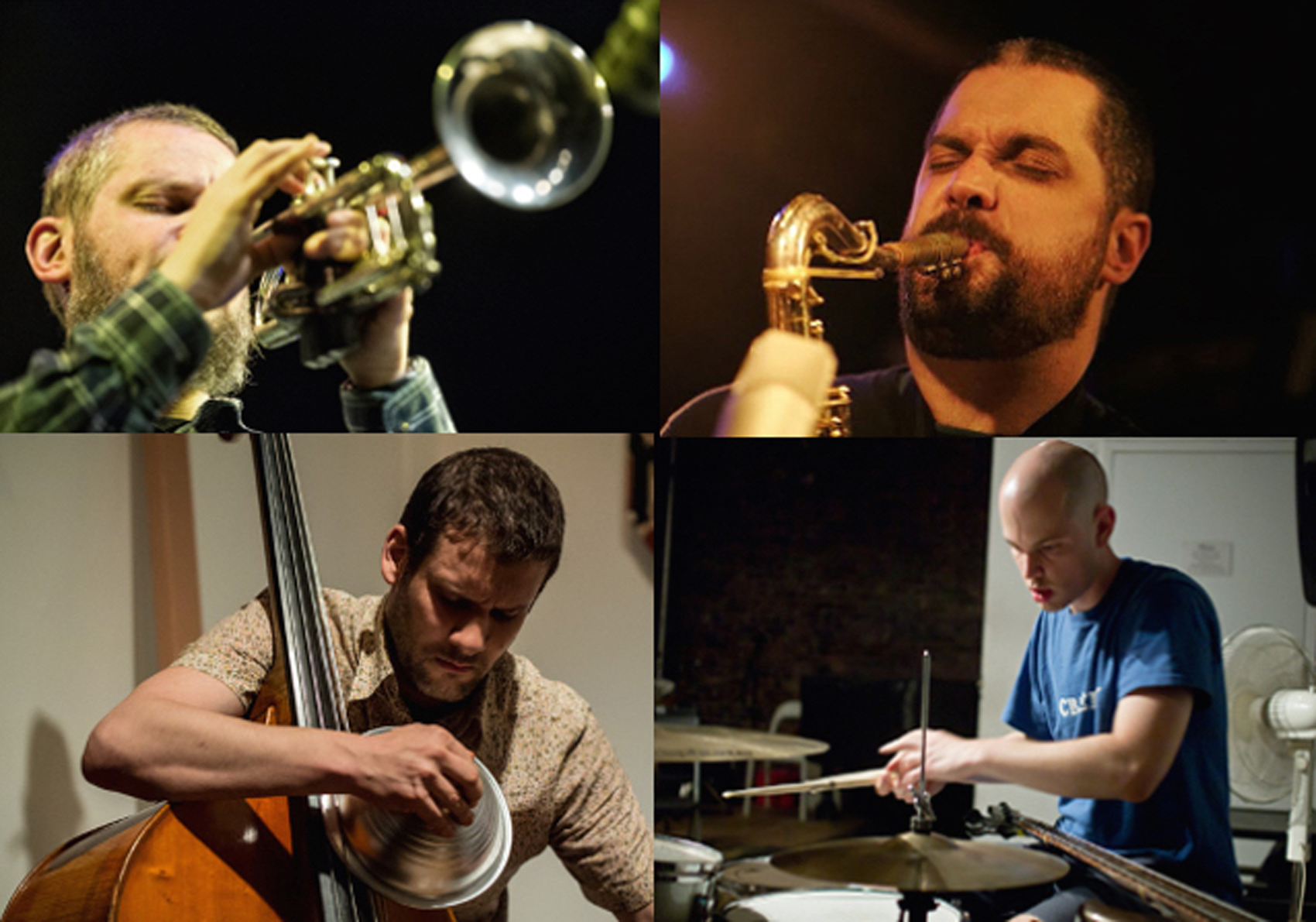 From Wolves To Whales > DAVE REMPIS - CHRIS CORSANO - NATE WOOLEY - PASCAL NIGGENKEMPER